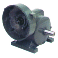 Inch Worm Gear Reducer