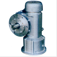Worm reducer for Construction Hoist